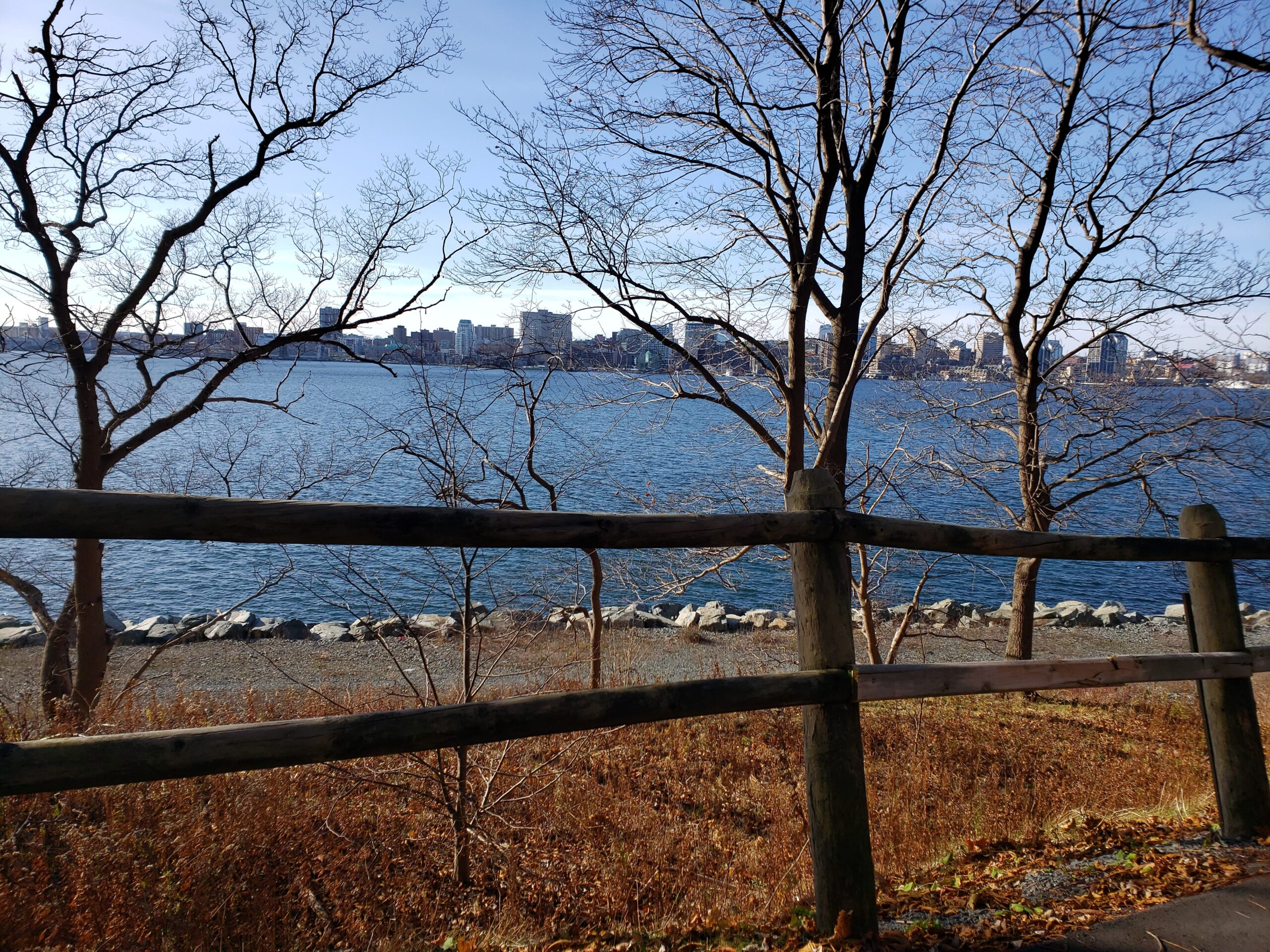 View of Halifax from Dartmouth harbour trail